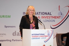 ITIC-conference-launch-London-Nov-18-2085
